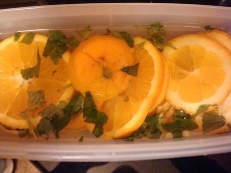 Orange Lemon Water ~ Energy and Cleansing